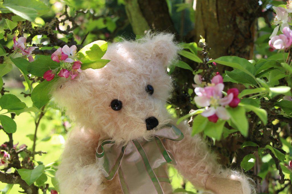 Blossom Bear