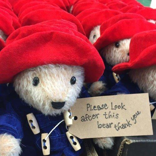 Canterbury Bears Paddington